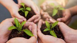 Vert et pas cher : des façons abordables d'être