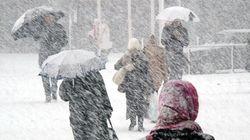 Toute une bordée de neige pour les