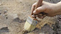 Des peintures datant de plus de 12 000 ans découvertes en