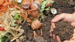 Le développement durable en marche: le compostage à grande