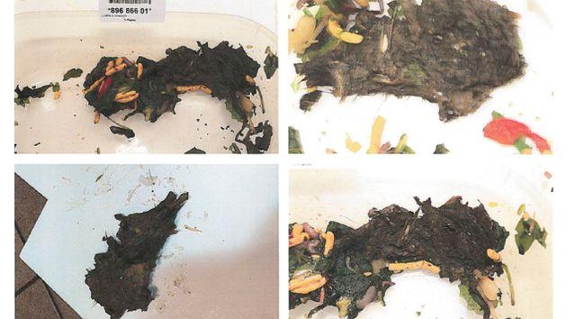 Carcasse d'animal dans une salade: un Normandin de Québec