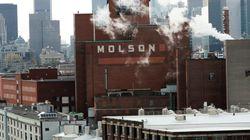 Molson va construire une nouvelle brasserie à