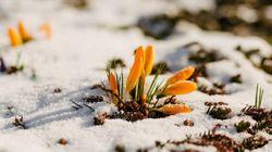 Avertissement de neige en vigueur en