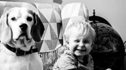 Un père photographie son bébé et son chien chaque mois durant deux