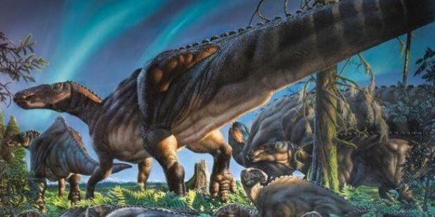 La lente incubation des oeufs des dinosaures expliquerait leur