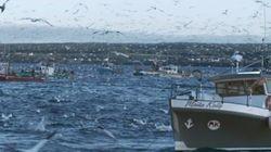 La course effrénée de la pêche au hareng dans «La pêche maudite»
