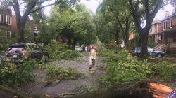 Des orages dévastateurs frappent le Québec et les dégâts sont
