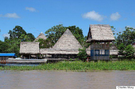 Amazonie: des initiatives citoyennes porteuses