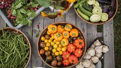 10 restaurants québécois qui cultivent leur