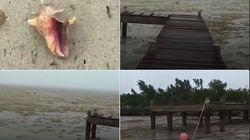 L'ouragan Irma a aspiré l'eau des plages des