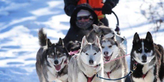 Début samedi de la Fête des neiges de Montréal: activités, spectacles et