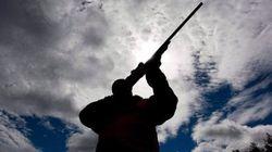 De plus en plus de fusils peuvent être transformés en armes automatiques, prévient la
