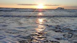 Record de température des eaux du golfe du