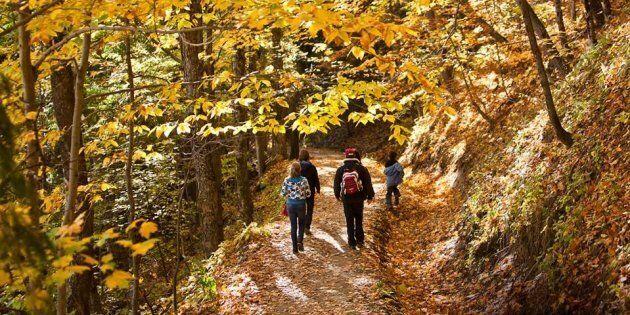 Les six plus beaux paysages à voir cet automne au