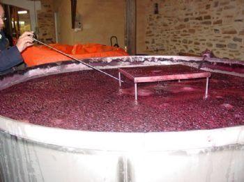 Les 6 ennemis du vin de terroir selon Alberto