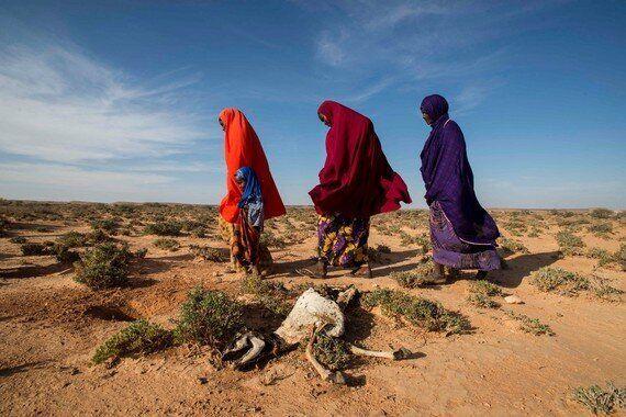 La sécheresse force des familles somaliennes à se séparer pour