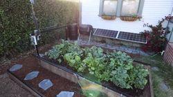 Ce robot cultive votre jardin automatiquement