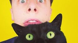 Le Youtubeur Norman est en deuil... de son chat