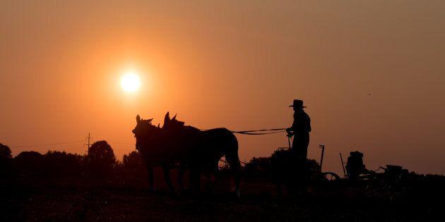 Les adeptes du mormonisme se considèrent comme des membres de l'une des tribus d'Israël - par la lignée...