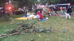 Plusieurs blessés graves après la chute d'un arbre à