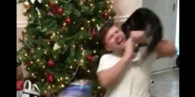 Ce chat n'a pas du tout supporté l'excitation de son maître à Noël