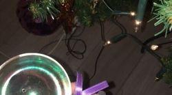 Cette grand-mère était loin de savoir que sa décoration de Noël était