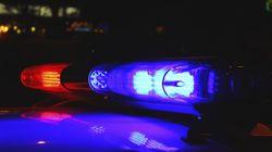 Une jeune femme meurt après avoir été attaquée par ses deux