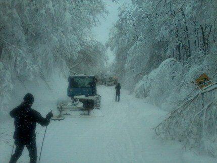 La désolation sur les sentiers du Parc de la Gatineau durant la tempête de glace.