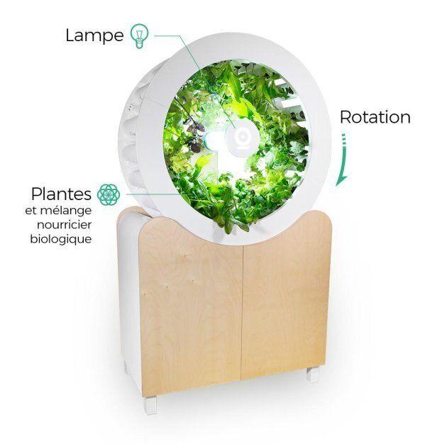 Un meuble pour cultiver vos légumes à la maison? Oui, c'est