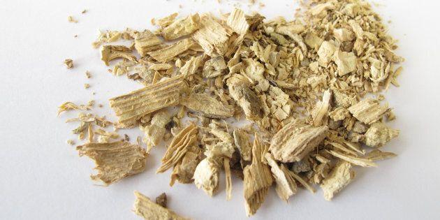 Le kava, breuvage âcre anti-stress en plein boom à New
