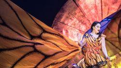 Luzia, le Mexique chimérique du Cirque du