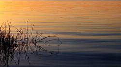 Des chercheurs réclament des investissements pour protéger le littoral