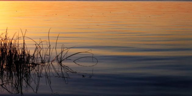 DSLR. Herbes à gauche, près du bord du lac, dans un coucher de soleil d'automne à la plage Les Grillons,...