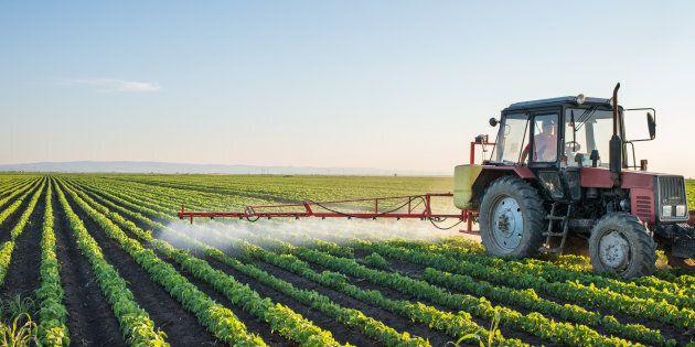 La question des pesticides touche de plein fouet le milieu agricole du Québec, j'en suis