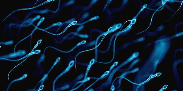 La fratrie involontaire née du sperme d'un médecin escroc américain vit un