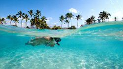 Les 15 meilleurs endroits pour faire de la plongée