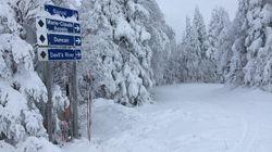 Un Noël encourageant pour le ski et les sports