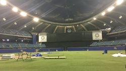 Valérie Plante rencontrera Projet Baseball Montréal pour parler d'un stade et des