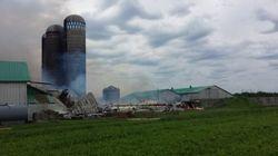 Plus de 80 vaches périssent dans l'incendie d'une ferme à