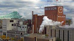 Modernisation à Montréal: Molson veut de l'aide du