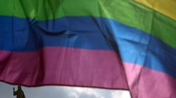 L'Irlande du Nord va autoriser les homosexuels à donner leur