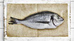 La religion, la politique et le poisson