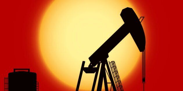 Vector Oil