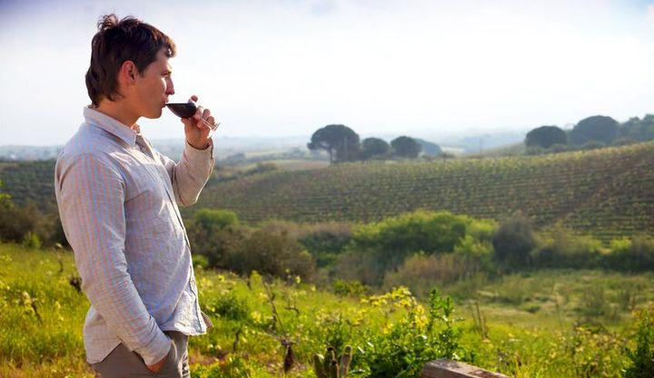 4844377 - man enjoying wine and looking beautiful view of vineyard