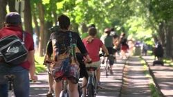 De plus en plus de cyclistes sur les routes du