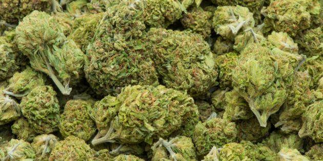 La Chine est préoccupée par l'arrivée de marijuana canadienne sur son