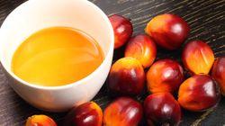 L'huile de palme, encore moins verte qu'elle ne le
