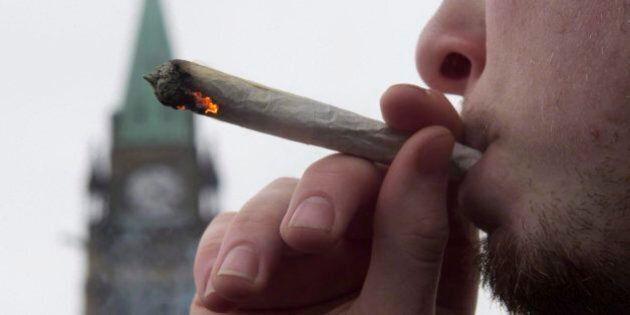 Légalisation de la marijuana : le militant Dana Larsen envoie un gramme de cannabis à chaque député du...