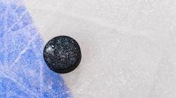 Montréal se dotera d'un anneau de patinage en