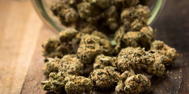 France: ils livrent par erreur 67 kg de cannabis... à des
